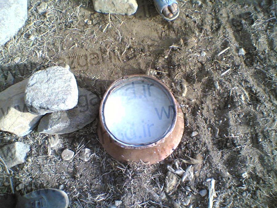 گله دوشی ازغند در بهار